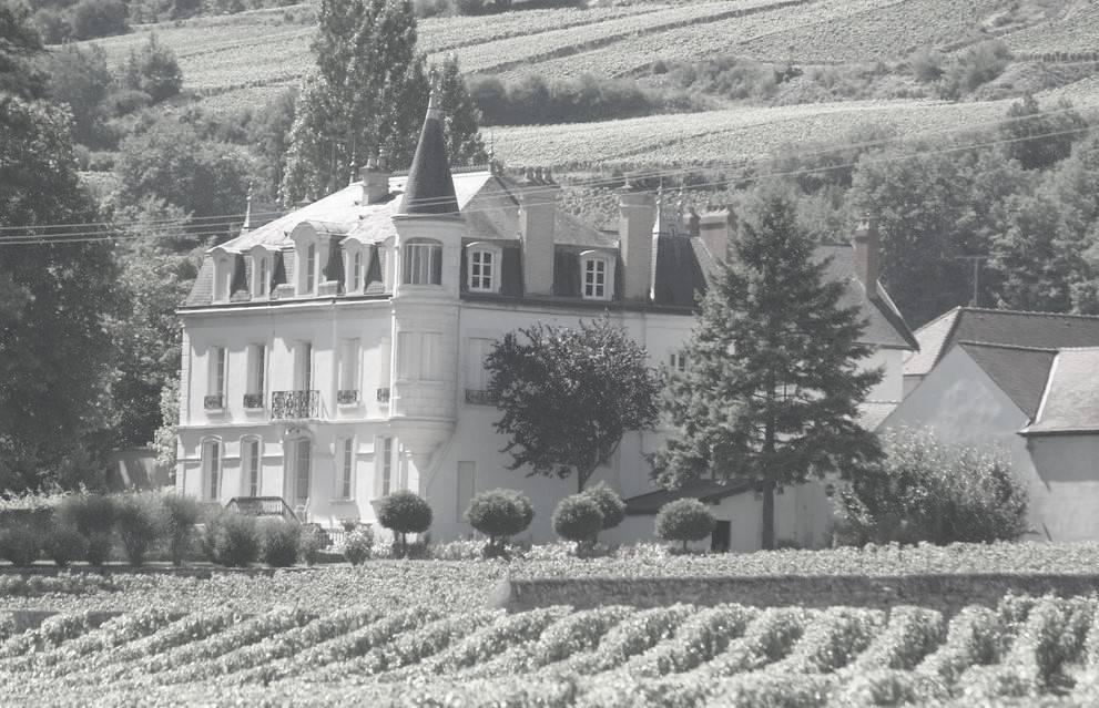 Domaine Chapelle & Fils