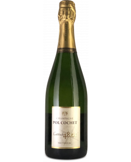 Champagne Brut Nature 48.01