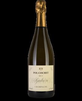 pol cochet champagne